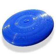 Ook in De Wissel:…..de frisbee !