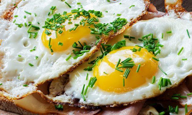 Zaterdag uitsmijters en broodjes kip